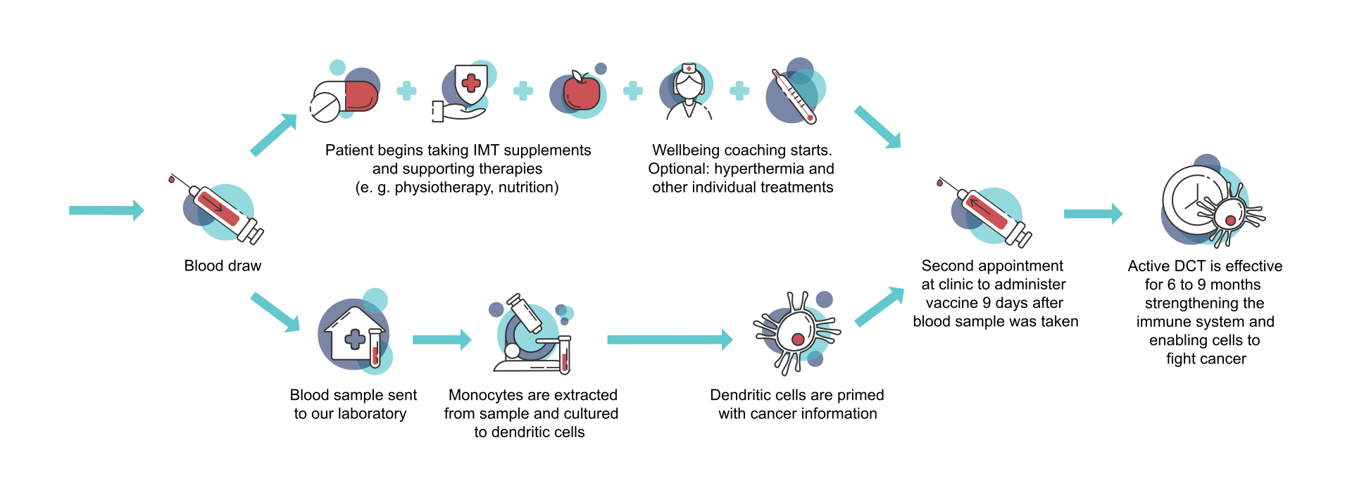 Infograph explaining dendritic cell therapy in English