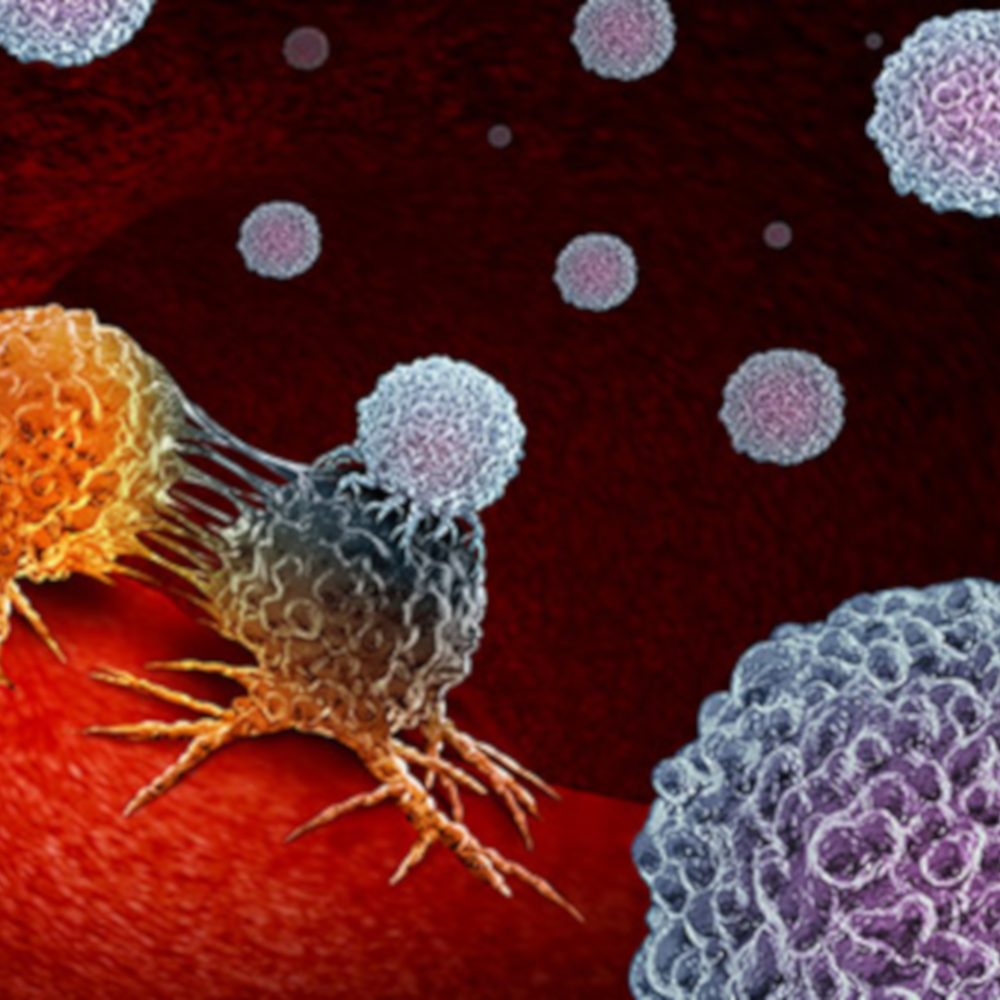 Dendritic Cells attacking tumour cells